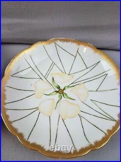 12 Unusual Spider Web & Flowers Haviland H & Co L France Limoges Platter Plates